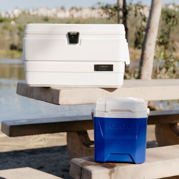 Igloo Latitude 51 Litre (54 US Quart) and Quantum 11 Litre (12 US Quart) Cool Box Combo