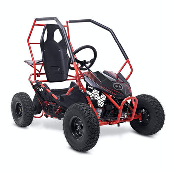 Zinc 36V  Electric Dune Buggy (14+ Years)