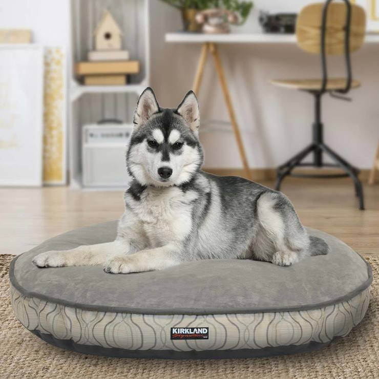 kirkland theangrybirdsarcade superb dog bed com of x costco photo beds at